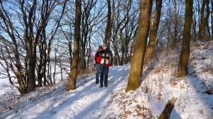 Schöner Wanderweg am Idstedter See