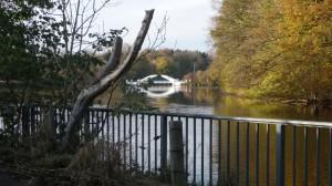 Weiße Brücke am Rosensee