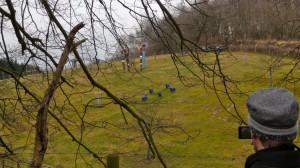 Blaue Schafe bei der Waldhütte
