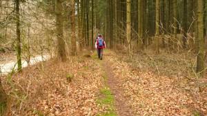 Toller Waldweg